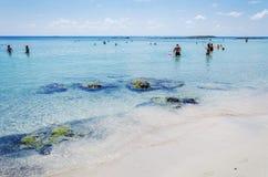 人们在克利特,希腊享受在Elafonisi海滩的一个晴天 库存图片