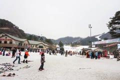人们在冬天享用滑雪需要在汉城韩国 免版税库存照片