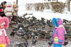 人们在冬天喂养鸽子 免版税库存照片