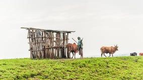 人们在埃塞俄比亚 免版税库存照片