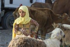 人们在尼兹瓦山羊市场上 库存图片