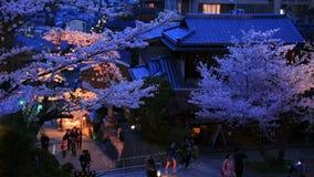 人们在樱花季节走在京都 免版税库存照片