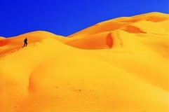 人们在沙漠 免版税库存照片