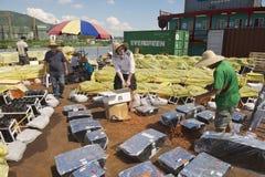 人们在澳门,中国设置了烟花比赛的烟火的设备 库存图片