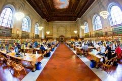 人们在纽约的公立图书馆阅览室  库存图片