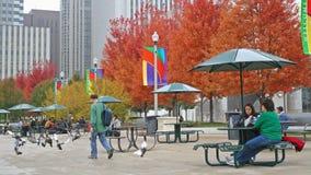 人们在芝加哥享用秋天树叶子 免版税图库摄影