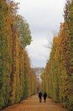 人们在维也纳走,奥地利公园  免版税库存图片