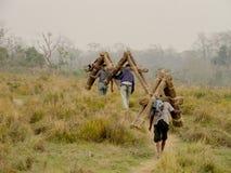 人们在Chitwan国家公园尼泊尔运载草 库存照片