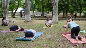 人们实践瑜伽,在室外,瑜伽类户外,健康生活方式,健康的妇女和人做的健身准备 股票录像