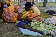 印第安农村市场 免版税库存图片