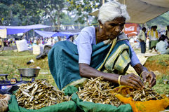印第安农村市场 库存照片