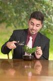 人整理一棵盆景树 免版税库存图片