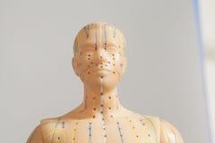 人头医疗针灸模型在灰色的 免版税图库摄影