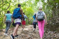 人们编组与迁徙在森林道路后面背面图、年轻人和妇女的背包远足的 免版税库存图片