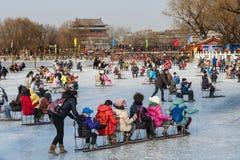 人们获得一个乐趣在冬天 免版税库存照片