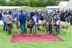 人们观看和谈论在施坦斯山羊市场上  库存照片