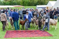 人们观看和谈论在施坦斯山羊市场上  图库摄影