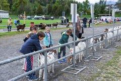 人们观看和谈论在施坦斯山羊市场上  免版税库存图片
