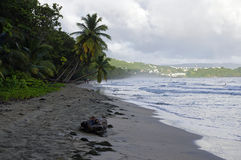 人们走关于2016年12月31日,马提尼克岛海岛的La金刚石海滩,  免版税库存照片