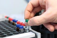 人们递拿着分析的试管小瓶集合在气体液体色谱分析仪 插入实验室的实验员 图库摄影