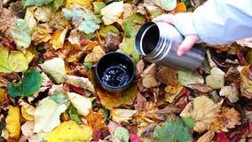 人` s手从热水瓶去除盒盖并且倾吐一份热的饮料入在秋天叶子的杯子 股票视频