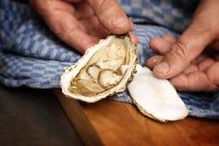人` s递显示在一蓝色厨房towe的一只开放新鲜的牡蛎 免版税图库摄影