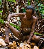 人Mentawai部落生产在苏铁的幼虫甲虫 库存图片