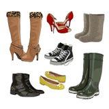 人s穿上鞋子妇女 温暖和胶靴 轻的鞋子 体育鞋子 向量 免版税图库摄影