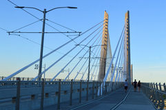 人Tilikum横穿的桥梁 免版税库存照片