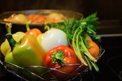 仍然厨房生活 新鲜的未加工的蔬菜和一口煮沸的大锅有开胃晚饭膳食的在电火炉 食物新鲜的日本沙拉蔬菜 免版税库存照片