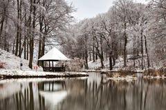 仍然湖在冬天 库存照片
