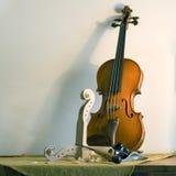 仍然生活小提琴 库存照片