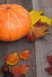仍然秋天生活 南瓜和烘干在木板的叶子 顶视图 免版税库存照片
