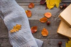 仍然秋天生活 秋叶,在木板的书 顶视图,葡萄酒样式 平的位置 免版税库存图片