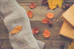 仍然秋天生活 秋叶,在木板的开放书 顶层 库存照片