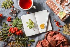 仍然秋天生活 空白的笔记薄,茶, ashbery,在灰色背景的自创礼物,顶视图 文本的空位 舒适家 库存图片