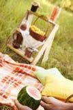 仍然秋天生活 西瓜 野餐 舒适安排 枕头 库存图片
