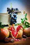 仍然秋季食物寿命 库存照片