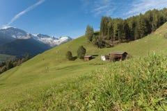 从一个农场的农村场面在一个山牧场地中在瓦莱亚乌里纳, Ita 库存照片