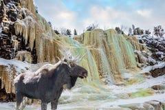 从一个峭壁的冻结的瀑布秋天 库存图片