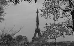 从一个庭院的黑白埃佛尔铁塔有光秃的树的在冬天,巴黎,法国 库存图片