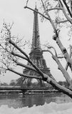 从一个庭院的黑白埃佛尔铁塔有光秃的树的在冬天,巴黎,法国 库存照片