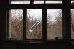 从一个房子或一个门里边的神色在树 免版税库存照片