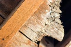 从一个木房子的老木头 图库摄影