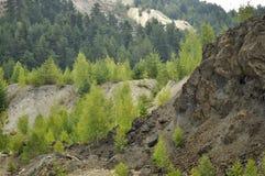 从一个矿的看法往森林 免版税库存照片