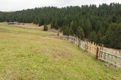 从一个避难所的农村场面在一个山牧场地中在Val di Fun 免版税库存照片