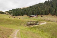 从一个避难所的农村场面有在登上中的光致电压的盘区的 库存照片