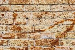从一块古老黄色葡萄酒砖的背景墙壁与表面上的生锈的腐蚀样式 背景构造了 图库摄影