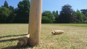 从一套取消的蟋蟀保释金树桩 免版税库存图片
