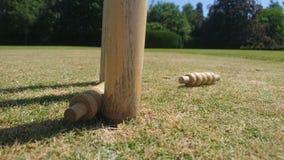 从一套撞出的蟋蟀保释金树桩 免版税库存照片